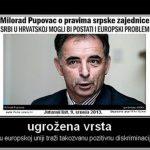 http://i1.wp.com/mojahercegovina.com/wp-content/uploads/2015/02/Pupovac.jpg?fit=1024%2C1024