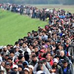 http://i.telegraph.co.uk/multimedia/archive/03481/wee-migrants_3481243c.jpg