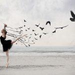 http://2.bp.blogspot.com/-YIUvigrHUAU/T0kRlVF8EiI/AAAAAAAAAIk/L73lXUHdq0g/s640/balletbird.jpg