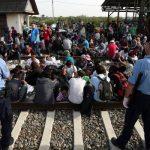 http://i.ndtvimg.com/i/2015-09/croatia-migrants_650x400_51442489951.jpg