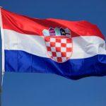 http://bbz.hr/images/uploads/ddz-zastava.jpg