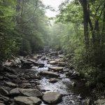 http://images.fineartamerica.com/images/artworkimages/mediumlarge/1/gurgling-brook-smoky-mountains-national-park-naturespix-.jpg