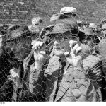https://upload.wikimedia.org/wikipedia/commons/6/69/Bundesarchiv_Bild_101I-185-0112-28%2C_Belgrad%2C_Erfassung_von_Juden.jpg