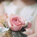 https://s-media-cache-ak0.pinimg.com/736x/1c/75/38/1c7538bba4d53b182de0cc096fedfdfa--rose-flowers-pink-roses.jpg