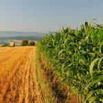 https://ec.europa.eu/clima/sites/clima/files/international/paris_protocol/images/agriculture.jpg