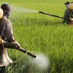 http://naturalsociety.com/wp-content/uploads/pesticides_field_guys_735_350-735x350.jpg