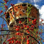https://croatia.hr/Images/t900x600-13889/croatia_slavonia_vukovar_005.jpg