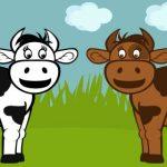 http://deshoda.com/wp-content/uploads/2010/08/2-cows-580.jpg