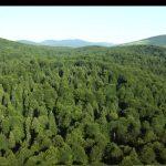 http://footage.framepool.com/shotimg/qf/294409873-croatia-mountain-range-hilly-region-green-color.jpg