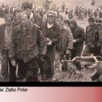 https://crnemambe.hr/images/001-images/08/pinter-travnik-zenica-08042019.jpg